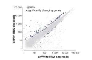 genomics-transcriptomics